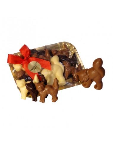 Les Chats en chocolat