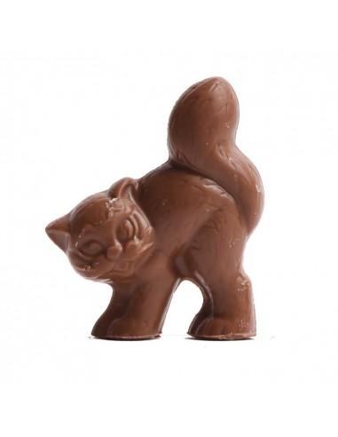 Schokoladenkatze teuscher